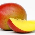 マンゴー : mango