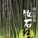 牧石ねぎのレシピ(ネギキムチ/ネギ塩だれ/ネギ炒飯/ネギ味噌ラー油etc)
