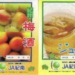 梅は冷凍するべき?美味しい梅酒/ 梅ジュースの作り方(資料 / レシピ) no.2