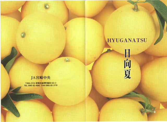 hyuganatsuno3