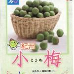 小梅漬けの作り方&小梅のしょうゆ漬けレシピ(資料)