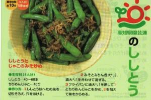 sisitou0627no2