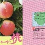 味も香りも日本一の桃の里「あら川の桃」(資料)
