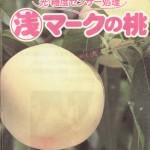 果汁を絞らずに瞬時に糖度を判別する透過型光センサー / 浅原の桃(資料)