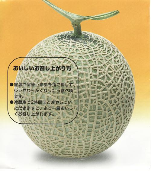 iwamizawamelon4
