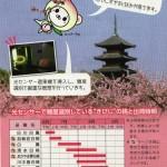 桃の砂糖煮 / 桃のコンフィチュールレシピ「きびじの桃」(資料)