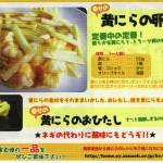 簡単黄ニラレシピ(卵とじ / 黄ニラドンドン)(資料)