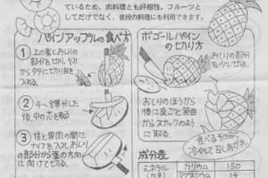pineapple0704no2