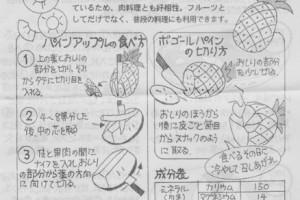 pineapple0704no2