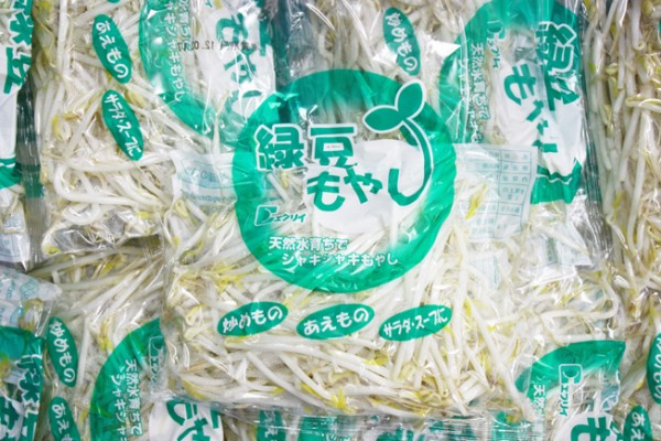 moyashi01