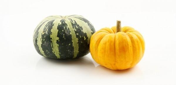 pumpkin-1009599_640
