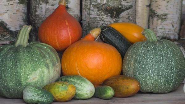 vegetables-943368_640