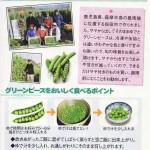 greenpeace1121no1