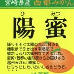 ヒミツにしたいおいしさの温州みかん「陽蜜(ひみつ)」(資料)