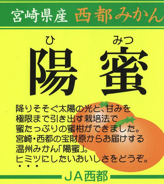 himitsu1121no2