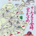 甘さが自慢!徳島県里浦特産のさつまいも「鳴門金時」レシピ4つ (資料)