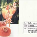 干し柿は仕上げ方法によって、名前が変わる?「あんぽ柿」(資料)