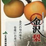 金沢の梨2種「南水」「あきづき」(資料)