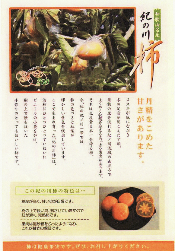 kinokawakaki1217no2