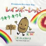 酸味の少ないまろやかな味わい!キラキラ・キウイ「レインボーキウイ」!(資料)