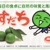 【レモンと栄養を比較】緑の宝玉「すだち」のパワー!(資料)