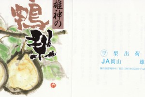 yaariinashi1217no3