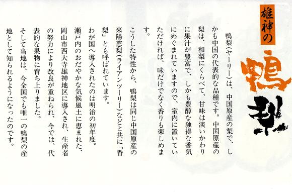 yarariinashi1217no2