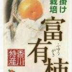 懐かしい味には訳がある「富有柿」(資料)