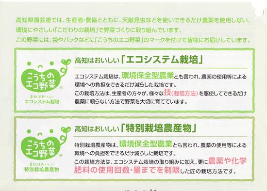 kouchikensanyasai1127no1