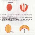 【図解】マンゴーの切り方(資料)