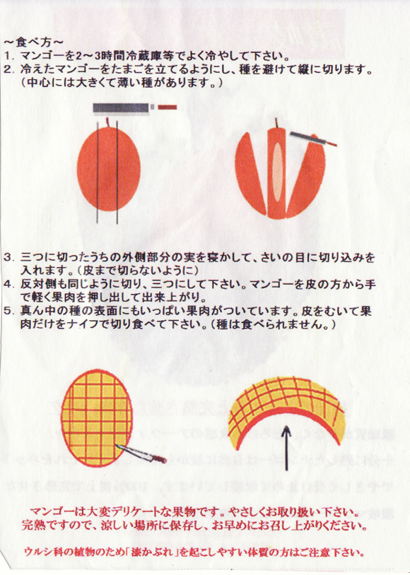 mango0106no1