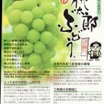 皮ごと食べられる岡山の最強品種。「桃太郎ぶどう」(資料)