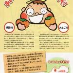 愛媛県周桑地区の特産!「横野柿」「あたご柿」(資料)