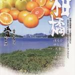 新柑橘7種類まとめ(資料)はるか/せとか/天香/天草/はるみ/はれひめ/紅まどんな