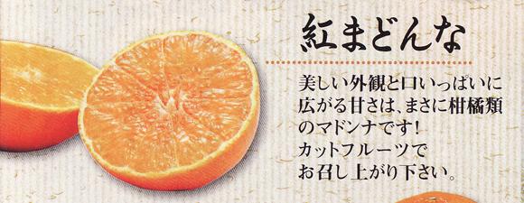kankitsu0220no3