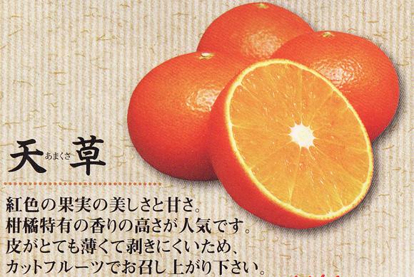 kankitsu0220no9