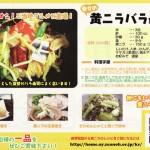 黄ニラ記念日 / 黄ニラバラ寿司レシピ(資料)