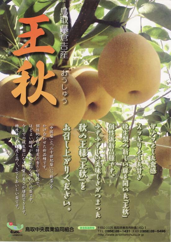 oushuunashi0211no1
