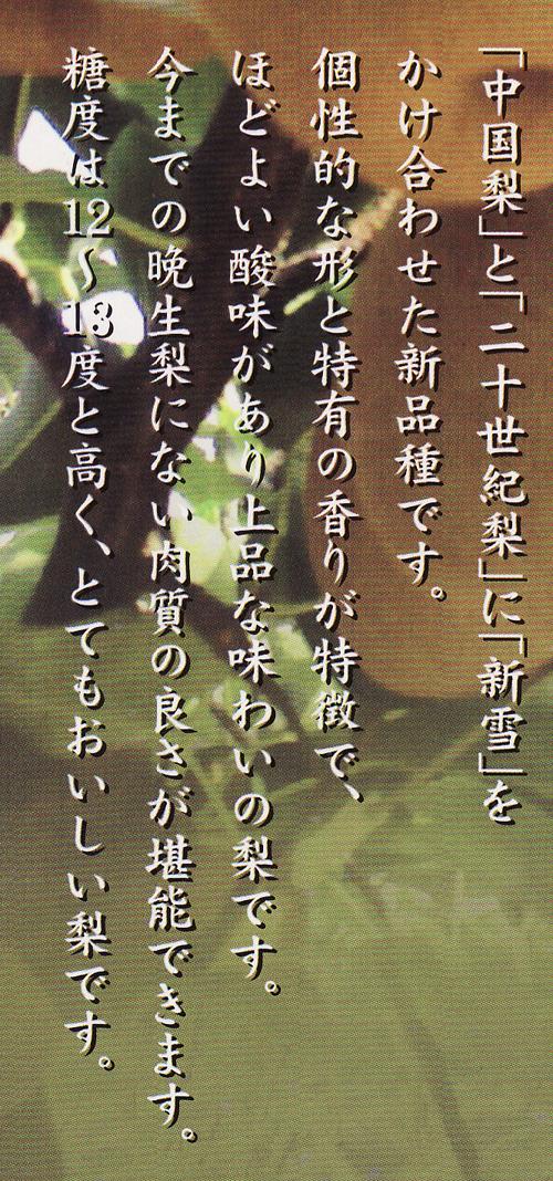 oushuunashi0211no2