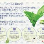 新食感プチプチ野菜「プッチーナ」のおいしい食べ方!(資料)