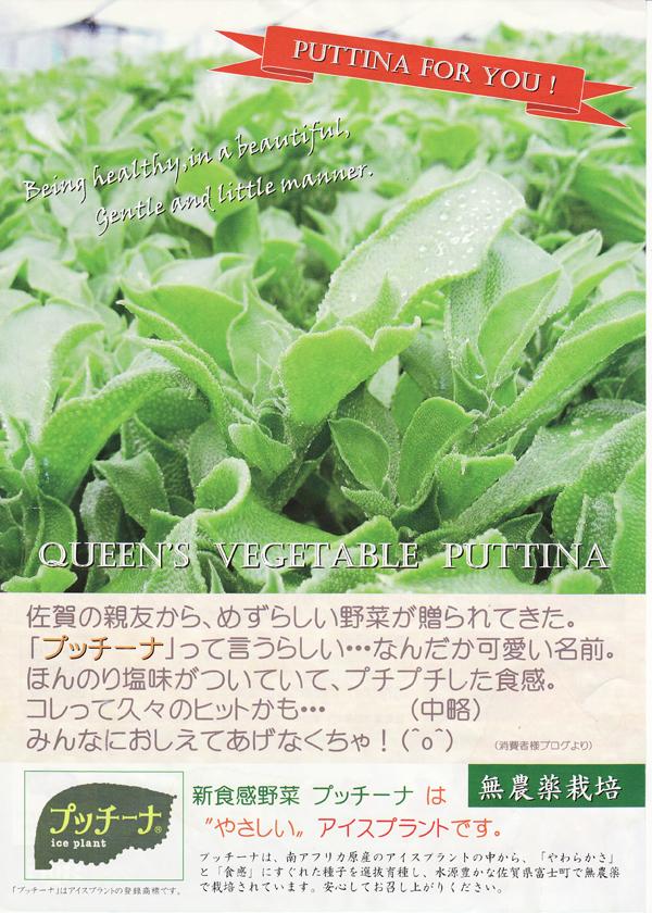 puccina0220no3