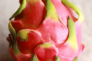 dragonfruit0211no4
