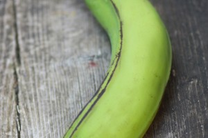 plantain0807no1