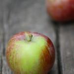 マッキントッシュ / mcIntosh apple