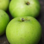 ブラムリー / Bramley's Seedling Apple