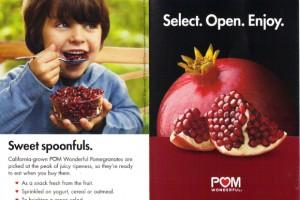 pomegranate1001no5