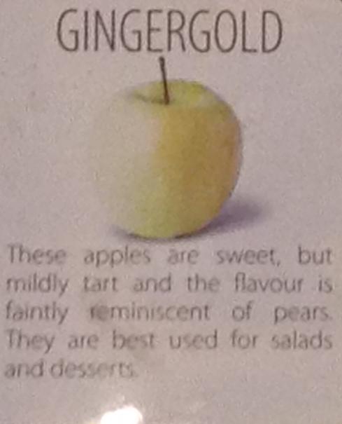 gingergold1006no1