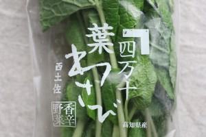 hawasabi1206no1