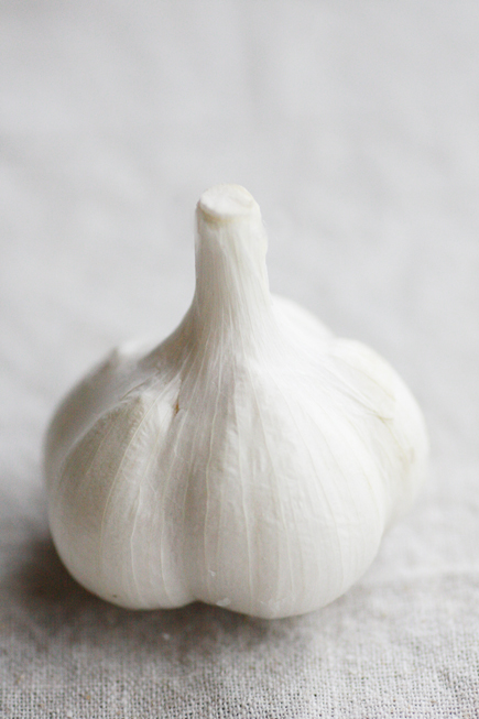premiumgarlic0221no1
