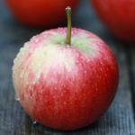 りんご(ルビネット) / Rubinette apple